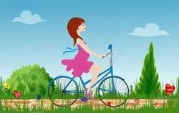 Беременный велосипед катания молодой женщины на поле весны цветя иллюстрация штока