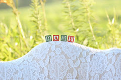 Беременный живот с блоком на ем Стоковые Фото