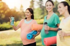 3 беременных девушки представляя в парке с циновками йоги в бутылках руки и спорт Стоковое Изображение RF