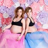 2 беременных подруги Стоковые Изображения RF