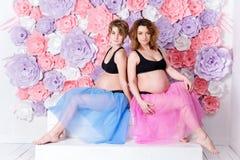 2 беременных подруги Стоковое Изображение RF