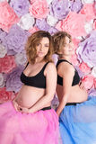 2 беременных подруги Стоковая Фотография