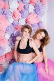 2 беременных подруги Стоковое Фото