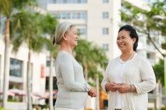 Беседуя женщины Стоковые Фото