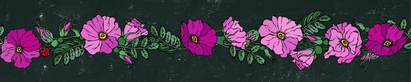 Бесконечная граница щетки с одичалыми розами Лето цветет поздравительная открытка или предпосылка свадьбы иллюстратор иллюстрации Стоковое Изображение