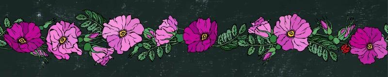Бесконечная граница щетки с одичалыми розами Лето цветет поздравительная открытка или предпосылка свадьбы иллюстратор иллюстрации Стоковые Фото