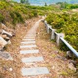 Бесконечная дорога в холме Стоковое Изображение RF