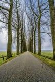 Бесконечная дорога одно Стоковое Изображение