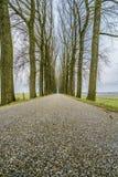 Бесконечная дорога 6 Стоковая Фотография RF