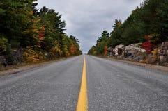 Бесконечная прямая дорога в древесинах во время бабьего лета стоковое изображение rf