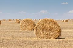 Бесконечные поля порук сена стоковое фото rf
