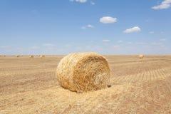 Бесконечные поля порук сена стоковые фото
