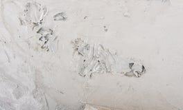 Бетонная стена гипсолита Стоковые Фотографии RF