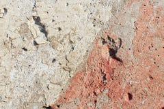 Бетонная стена с красным цветом Стоковое Изображение