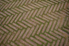 Бетон с полом травы стоковые изображения rf