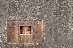 бетон 01 клетки Стоковые Фото