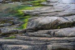 Бечевник гранита в Tadoussac, Квебеке, Канаде Стоковые Изображения RF