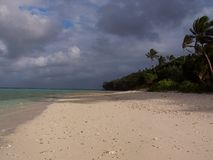 Бечевник острова Тонги Стоковое фото RF