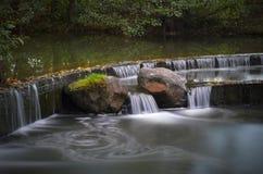 Беларусь, Минск: молочницы Forest Park (Drozdy), осень падают конец вверх Стоковое Фото