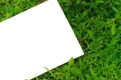 Белая бумага на траве Стоковые Изображения
