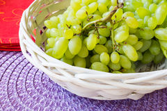 Белая виноградина - Pizzutello стоковая фотография