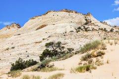 Белая гора Юта песчаника Стоковые Фотографии RF
