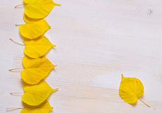 Белая деревянная предпосылка с славными желтыми листьями Стоковые Изображения
