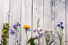 Белая деревянная предпосылка с цветками Стоковые Фото
