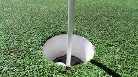 Белая завальцовка шара для игры в гольф в чашке на искусственном зеленом цвете установки видеоматериал