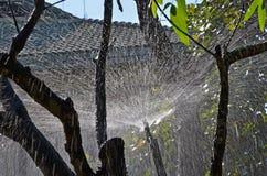 Белая линия картина воды от Спрингера Стоковые Изображения RF