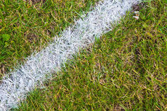 Белая линия на траве спортивного стадиона стоковая фотография rf