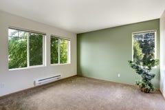 Белая и зеленая пустая комната Стоковые Фотографии RF