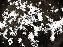 Белая и черная абстрактная multicolor предпосылка Стоковое Изображение