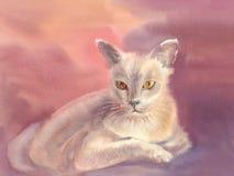 Белая иллюстрация акварели кота Стоковые Фотографии RF