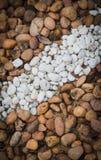 Белая каменная нашивка Стоковые Фотографии RF