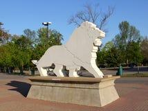 Белая каменная статуя льва Стоковые Изображения