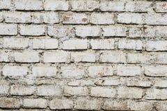 Белая кирпичная стена Стоковое Изображение RF