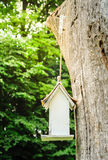Белая коробка вложенности на старом дереве Стоковая Фотография