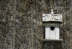 Белая коробка вложенности на старом дереве Стоковая Фотография RF