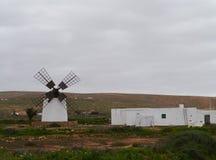 Белая мельница с 4 крылами на Фуэртевентуре Стоковое фото RF