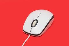 Белая мышь компьютера USB с кабелем Стоковые Фото
