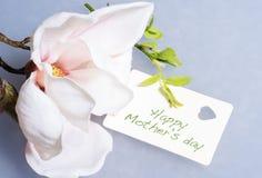 Белая орхидея с Днем матери карточки счастливым Стоковая Фотография