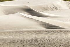 Белая песчанная дюна на к северу от Индии Стоковое фото RF