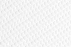 Белая предпосылка картины Стоковое Изображение RF