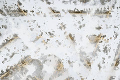 Белая прожилковидн покрашенная предпосылка Стоковая Фотография RF