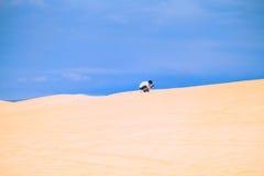 Белая пустыня на Ne Mui Стоковые Фото