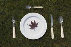 Белая плита на траве Стоковое фото RF
