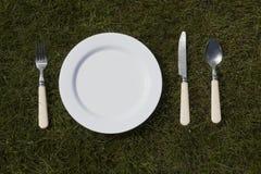 Белая плита на траве Стоковые Фотографии RF