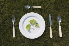 Белая плита на траве Стоковая Фотография