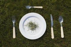 Белая плита на траве Стоковое Изображение RF